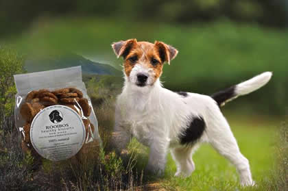 Rooibos healthy dog biscuits with organic rooibos and chamomile