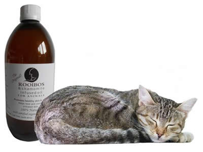 rooibos & chamomile oil for animals